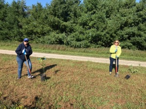 Cheryl and Carol planting trees on TD Tree Days